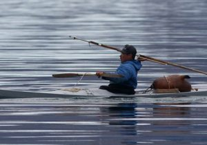 Narwhal Hunter in kayak